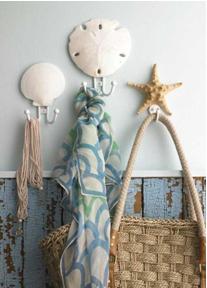 sea-shell-wall-hooks