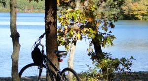 o Nickerson, Cliff Pond, Fall