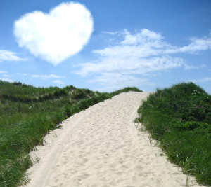 Promote your local Cape Cod, Martha's Vineyard or Nantucket beach!