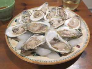 wellfleet-oysters-2
